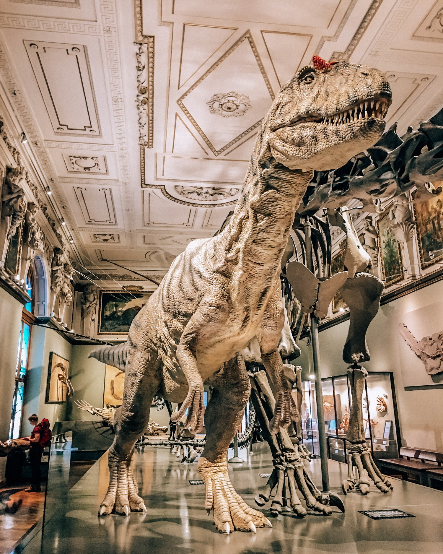 Muzeu-Istorie-Naturala-Viena-Austria